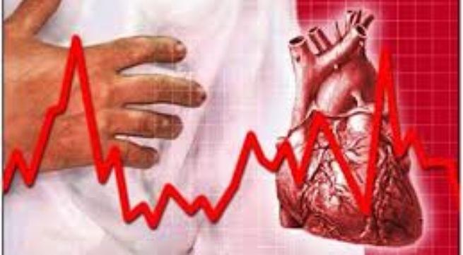 Dược thảo cương dương có thể gây rối loạn nhịp tim