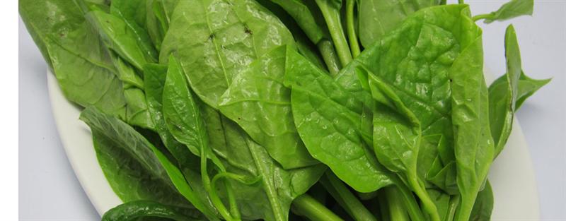Thực phẩm nên và không nên dùng khi viêm họng