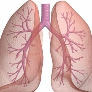 Các bệnh về phổi nguy hiểm các bạn cần biết