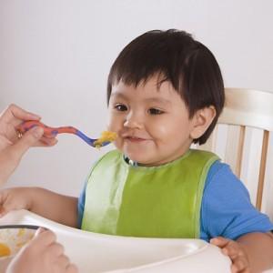 Dinh dưỡng cơ bản cho bé 2 tuổi phát triển toàn diện