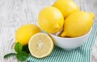 Bowl with Lemons  on a wooden background