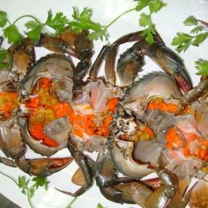 Ăn cua biển có lợi cho sức khỏe