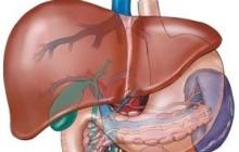 Thuốc đông trùng hạ thảo chữa bệnh