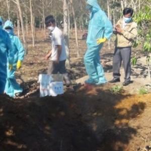 Xuất hiện ổ dịch cúm gia cầm H5N6 đầu tiên ở Kon Tum