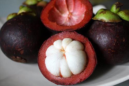 qua-mang-cut-chua-benh