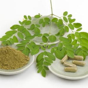 8 Tác dụng của cây chùm ngây đối với sức khỏe mà bạn nên biết