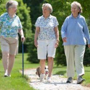 Phương pháp chữa cao huyết áp không cần dùng thuốc ở người già