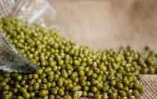 Cách chế biến bài thuốc dân gian chữa bệnh gout từ đậu xanh
