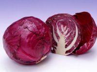 Bắp cải tím giúp da đàn hồi, mềm mại