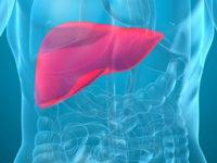 7 dấu hiệu phỏng đoán bệnh ung thư gan