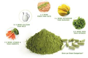 Thành phần dinh dưỡng của trà chùm ngây