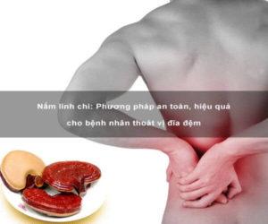 Hiệu quả của việc sử dụng nấm linh chi trong chữa bệnh thoát vị đĩa đệm