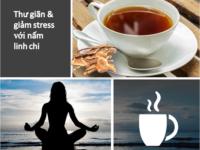 Giảm stress hiệu quả với nấm linh chi