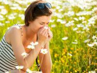 3 bài thuốc dân gian chữa viêm mũi dị ứng hiệu quả