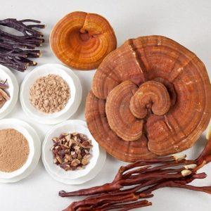 Điều trị viêm da dị ứng hiệu quả nhờ nấm linh chi