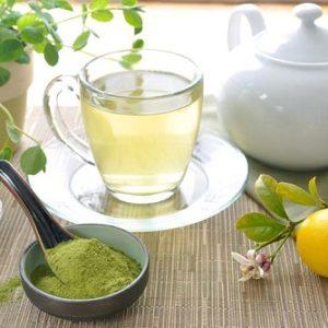 Lợi ích tuyệt vời trà chùm ngây mang lại là gì?