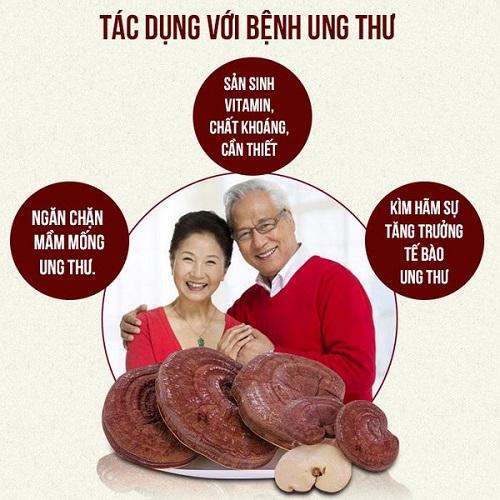 Tác dụng của nấm linh chi đối với bệnh ung thư