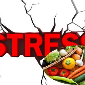 7 loại thực phẩm giúp giảm stress hàng ngày