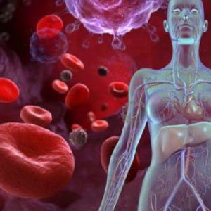 Nguyên nhân và cách chữa bệnh thiếu máu hiệu quả nhất hiện nay