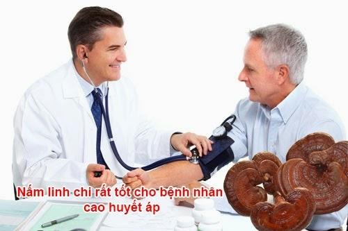 Điều trị cao huyết áp bằng nấm linh chi