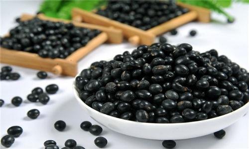Chữa bệnh phong tê thấp bằng hạt đậu đen
