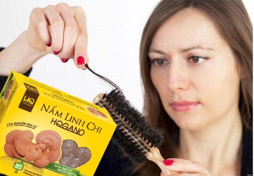 Điều trị rụng tóc bằng nấm linh chi hqgano