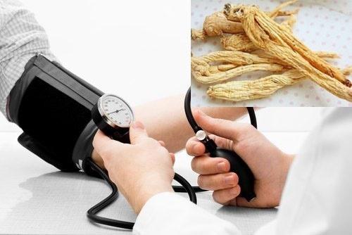 Điều trị tăng huyết áp bằng nhân sâm hoa kỳ