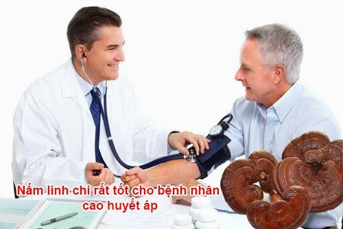 Chữa huyết áp cao bằng nấm linh chi