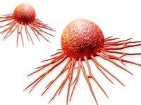 Điểm danh 9 loại trái cây chống ung thư hiệu quả nhất