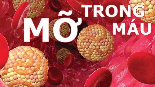 Máu nhiễm mỡ là một trong những căn bệnh thường gặp