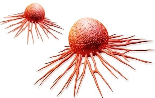 Tế bào ung thư bị tiêu diệt khi ăn gạo lứt muối mè?