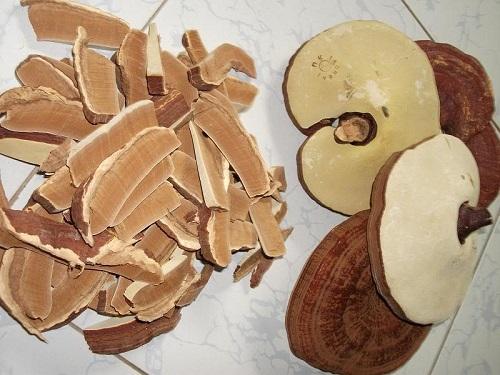Nấm linh chi Trung Quốc bán tại thị trường Việt