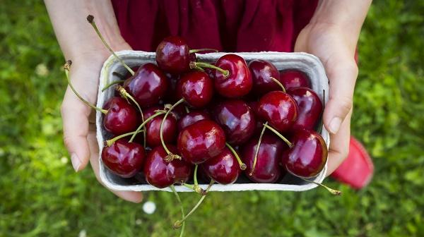 quả anh đào (Cherry) còn có tác dụng rất tốt trong làm đẹp