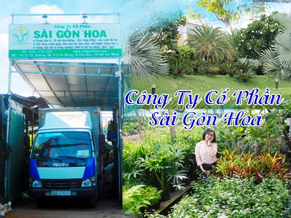 Công ty Cổ phần Sài Gòn Hoa