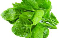 Top 4 công thức trị nám bằng rau mồng tơi hiệu quả