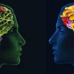 Những thực phẩm bổ não được khuyên các chuyên gia khuyên dùng