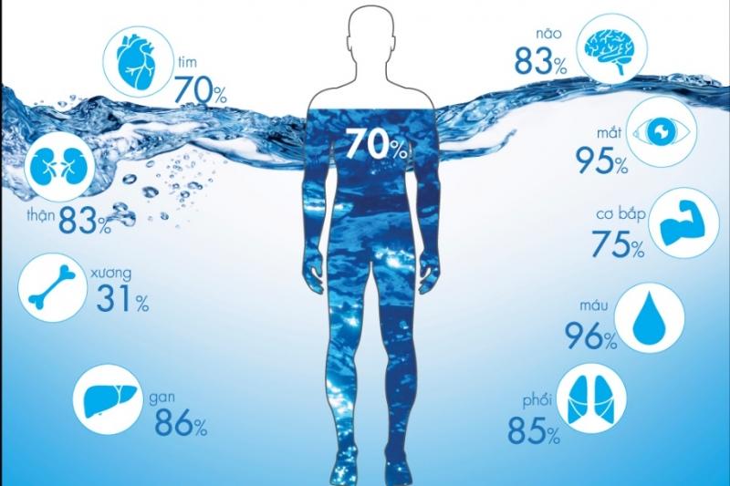 Đối với cơ thể thì nước chiếm 70% trong cơ thể con người